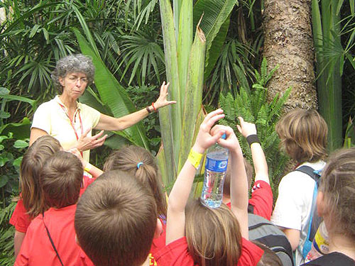 Learning about plants at the Eden Project