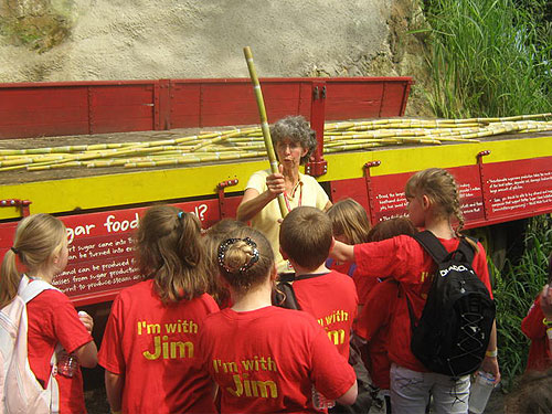 At the Eden Project - learning about sugar cane